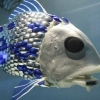 Pollution-Sensing Robotic Fish